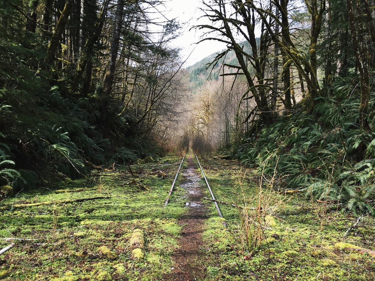This Abandoned Railroad Could Become An Epic Trail From Portland S Burbs To The Sea Willamette Week