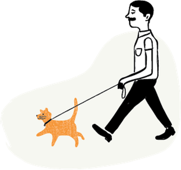 Should I leash my cat? (Jason Walton) (@Waltoons)