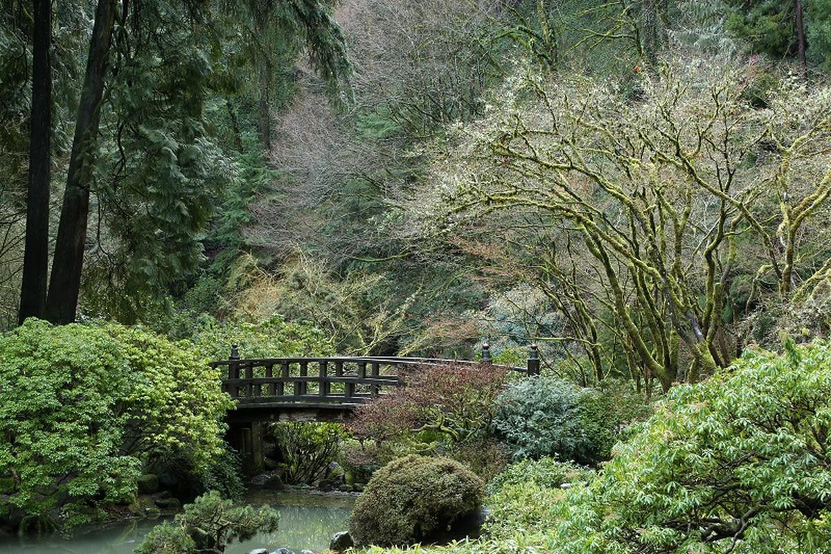 Portland S Japanese Garden Will Reopen This Week Willamette Week