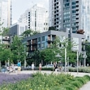 South Waterfront condos. (Rachael Renee Levasseur)