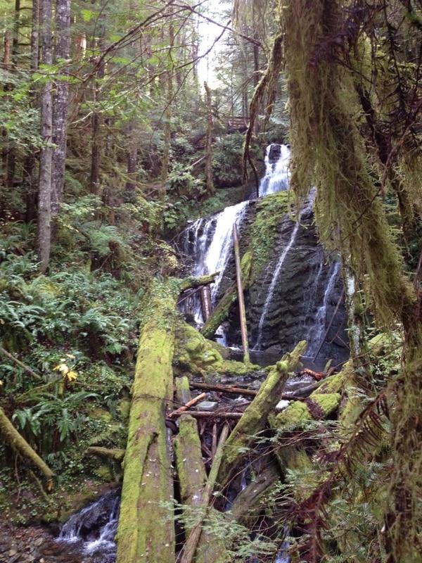 Siouxon Creek (Daniel McKenna)