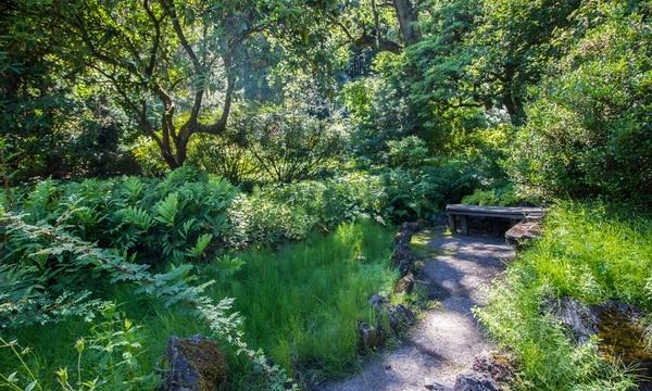 In the Portland Area\'s Wealthiest Neighborhood Lies a Hidden, Public ...