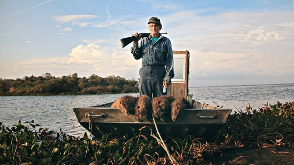 Defending Louisiana from the invasion of nutria.