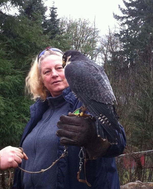ANIMAL LOVER: Cheryl Jones has been in love with wild animals since she saved a seagull with a hook its beak at age 12. (A Walk on the Wild Side)