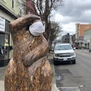 Beaver statue on Northeast Alberta Street. (Julie Showers)