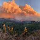 Oregon wildfires on Sept. 8, 2020. (Bureau of Land Management)