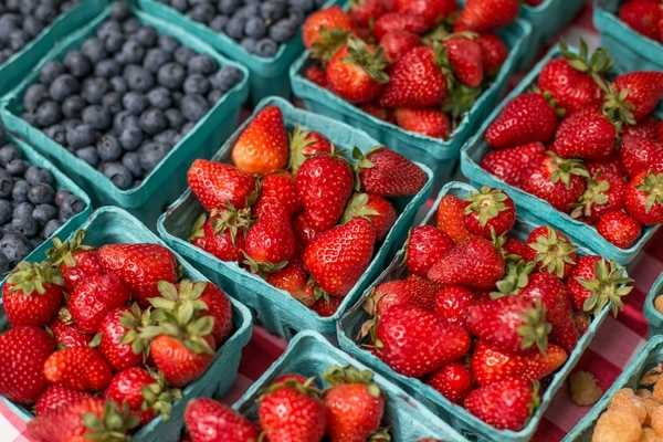 Many Oregon strawberry growers are now turning to blueberries, which last for weeks.
