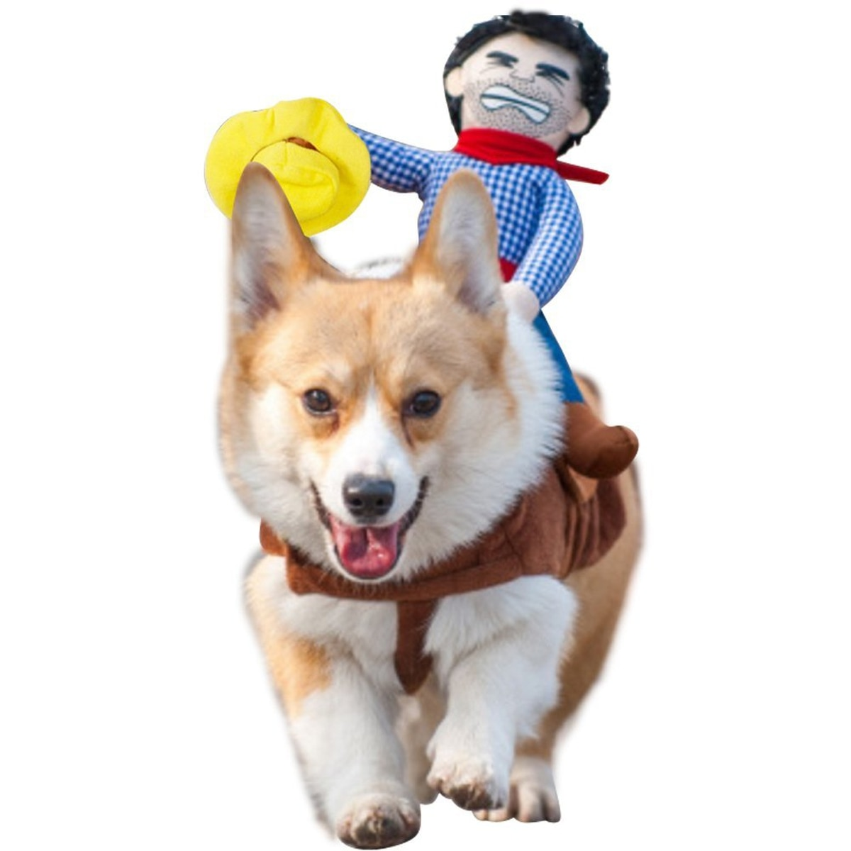 swag up your dog in these dorky halloween costumes - willamette week