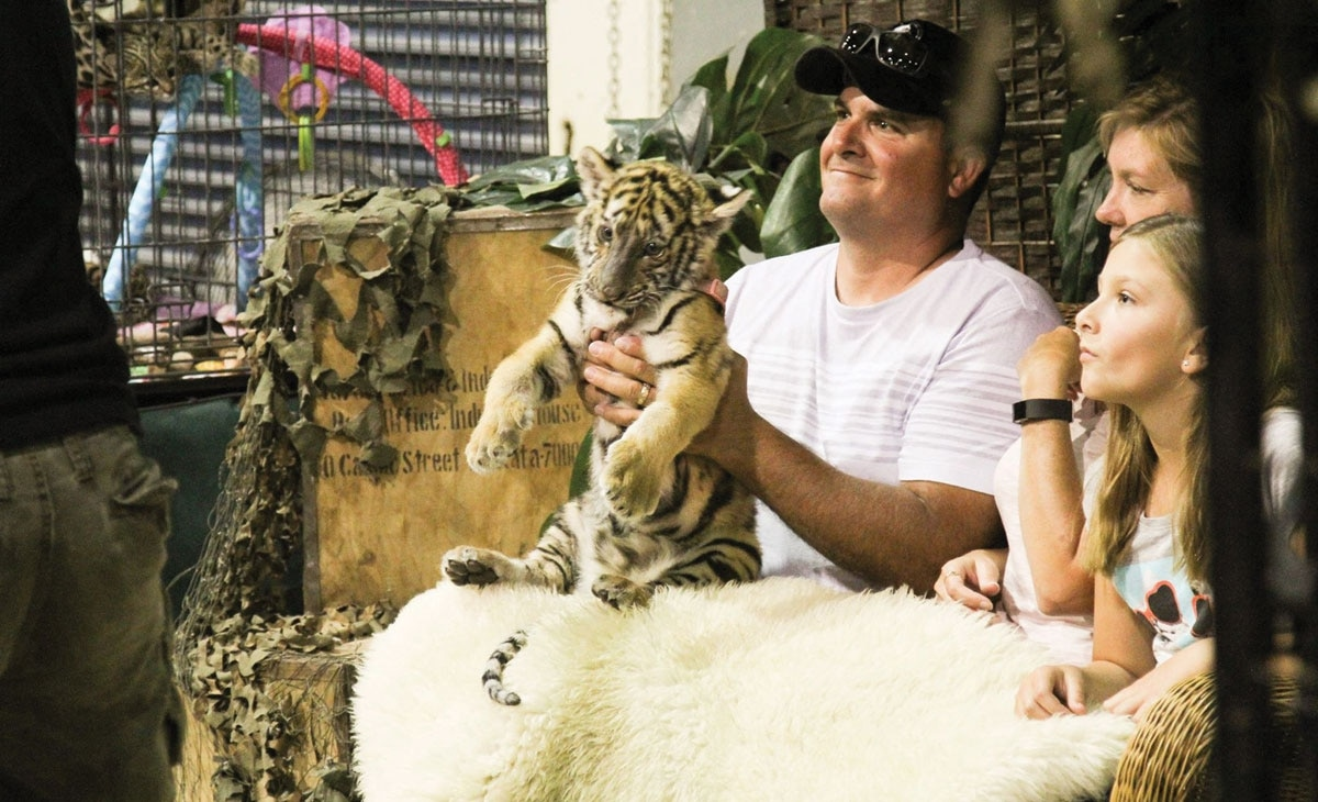 A Defiant Couple Is Caging Big Cats in the Portland Suburbs  Should