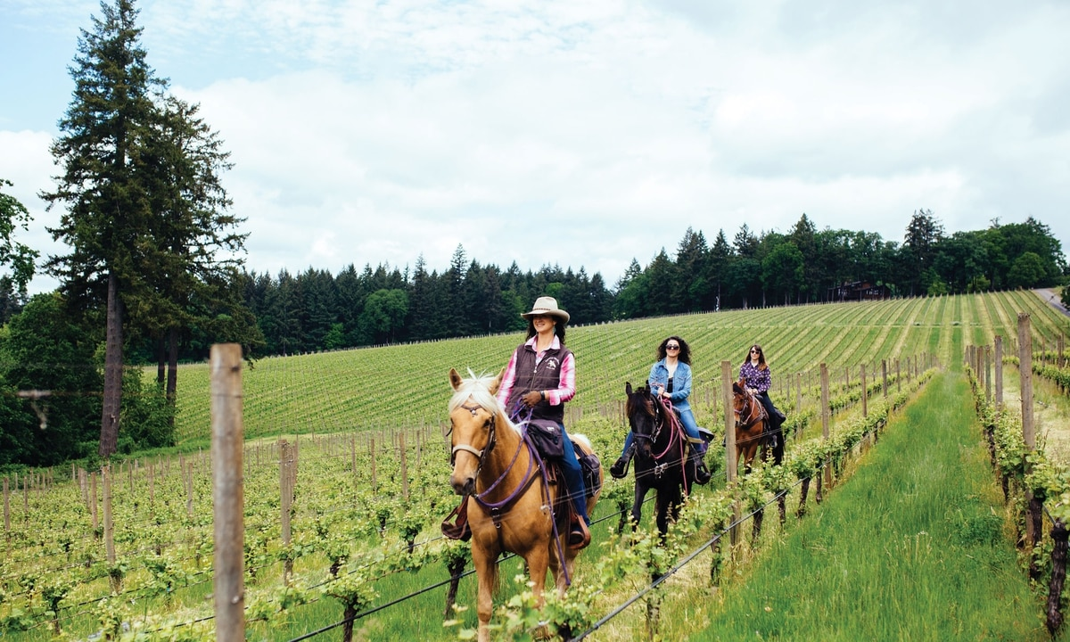 An Oregon Company Will Take You On A Tour Of Wine Country