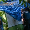 A Portland police officer peers into a tent on the edge of Laurelhurst Park. (Justin Yau)