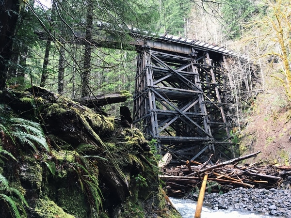 Wolf Creek trestle. (Joshua Thomas)