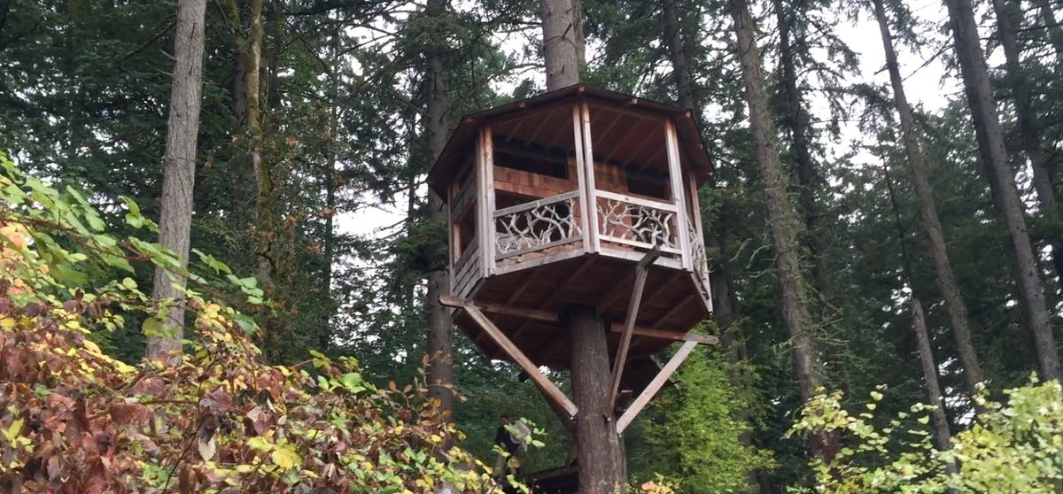 We Rented a Treehouse in Portland on a New Airbnb-Style Site