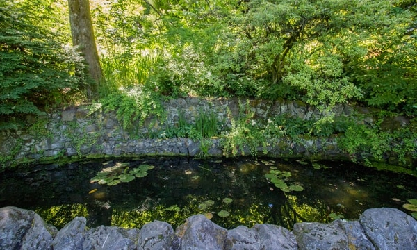 in oregons wealthiest neighborhood by real estate pricing elk rock garden is a place of uncommon serenity that is accessible to all - Elk Rock Garden