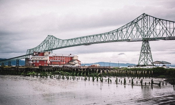 New home for cormorants: the Astoria-Megler Bridge. (Sam Gehrke)